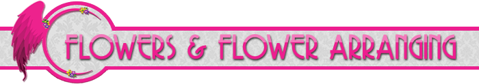 Services: Flowers & Flower Arranging