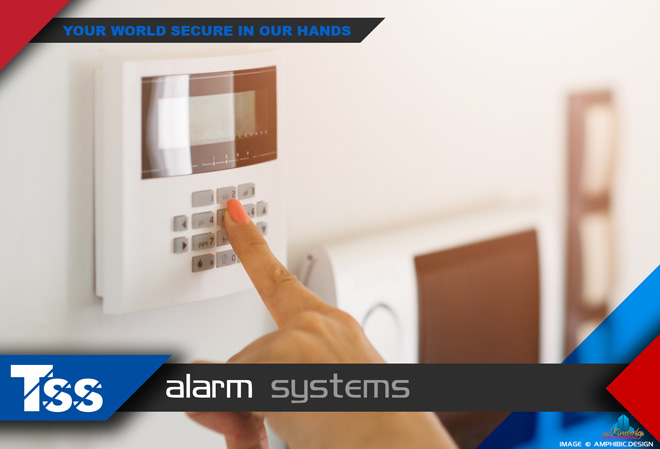 TSS Top Security Systems Kimberley: Services - Alarm Systems